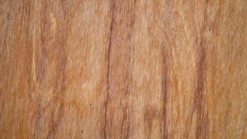vídeo macro de uma textura de madeira do grunge no qual você pode ver a cor, o grão da madeira