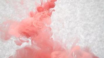 tinta roja en agua. cámara lenta creativa. sobre un fondo blanco