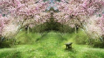 Fantasie Frühlingsgarten video