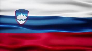 lazo de la bandera de eslovenia