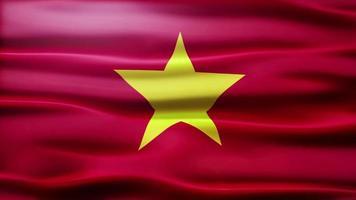 loop bandiera del vietnam video