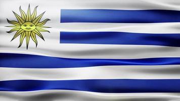 loop bandiera uruguay video