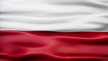 lazo de la bandera de polonia