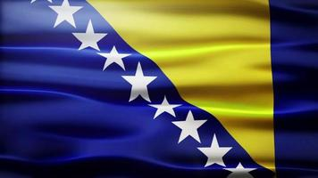 lazo de la bandera de bosnia y herzegovina