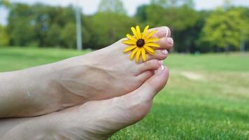 pieds d'une femme sur l'herbe