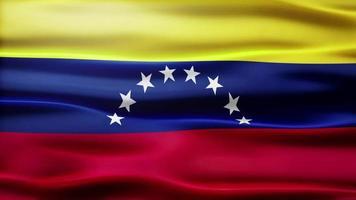 bandiera del venezuela loop video