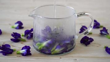 suco de ervilha borboleta - bebida saudável