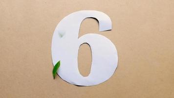 Flat lay footage of number 6. Green leaves drop on the paper. video