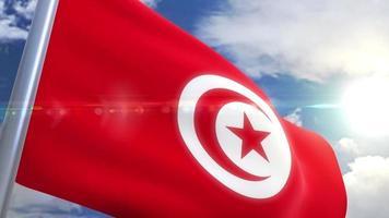 Ondeando la bandera de la animación de Túnez video