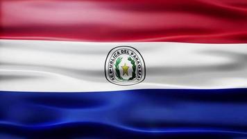 ciclo di bandiera del Paraguay video