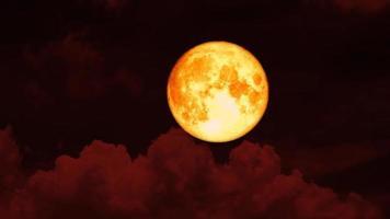 lua de sangue nascendo no céu noturno video