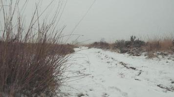eine niedrige Einstellung eines schneebedeckten Pfades