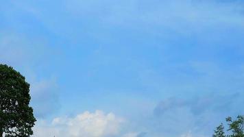 mooie blauwe hemel met witte wolken omlijst door bomen video