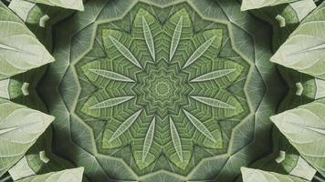 hojas de caleidoscopio