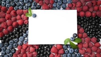 Summer Berries  video