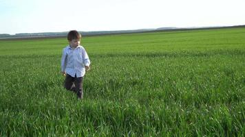 A Boy in the Field