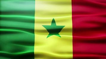 lazo de bandera de senegal
