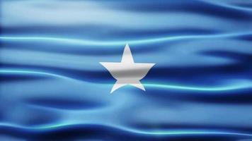 lazo de la bandera de somalia