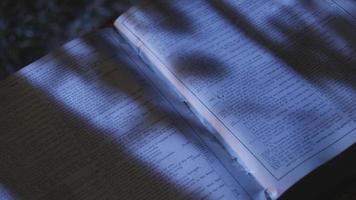 pistola en una biblia