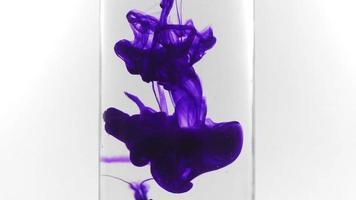 violette Tinte vertikal video