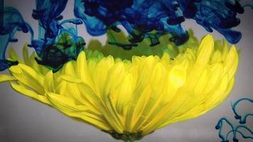 flor amarilla tinta azul y verde