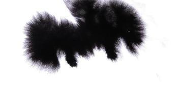gocce di inchiostro e diffuse su sfondo bianco