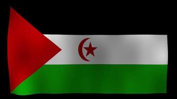 Western Sahara Flag 4K Motion Loop Stock Video