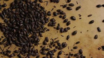colpo rotante di orzo e altri ingredienti per la produzione di birra - produzione di birra 142