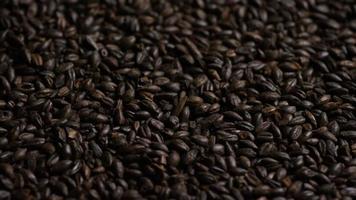 colpo rotante di orzo e altri ingredienti per la produzione di birra - produzione di birra 170