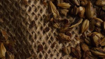 colpo rotante di orzo e altri ingredienti per la produzione di birra - produzione di birra 226