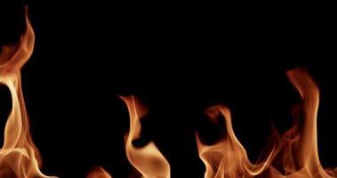 hermosas llamas con transparencia desde la parte inferior de la escena en cámara lenta 4k video