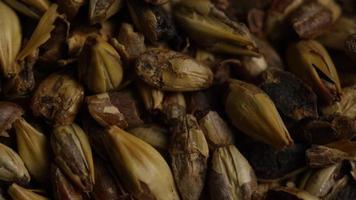 colpo rotante di orzo e altri ingredienti per la produzione di birra - produzione di birra 077