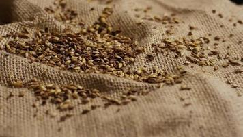 colpo rotante di orzo e altri ingredienti per la produzione di birra - produzione di birra 239
