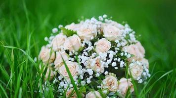 bouquet de roses roses video