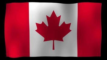 bandiera canadese 4k motion loop archivi video
