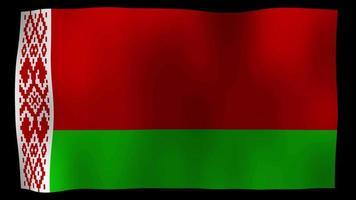 belaruz flag 4k motion loop stock video