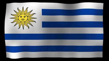 uruguay flag 4k motion loop stock video