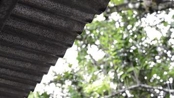 druppels in dak