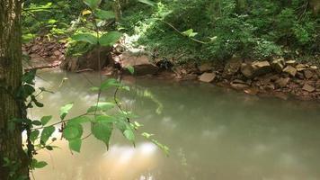 agua del río que fluye lentamente 4k