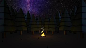 door sterren verlicht kampvuur video