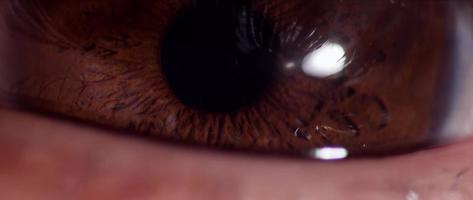 Cerca del ojo humano con iris marrón parpadeando cuatro veces