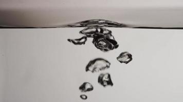 estremo vicino di acquario e bolle d'aria che esplodono in superficie su sfondo grigio in 4K