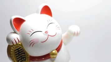 maneki neko close up video