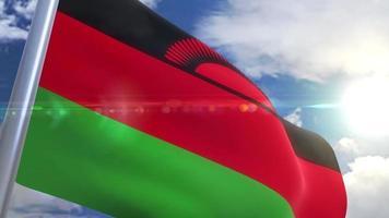 agitando bandeira da animação malawi video