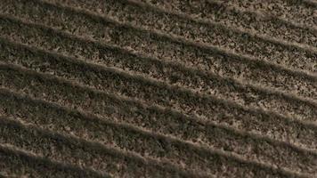 texturas de fondo de movimiento con textura cinematográfica (no se utiliza cgi) - 028