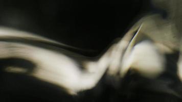 fundo de movimento abstrato cinemático (sem cgi usado) 1144