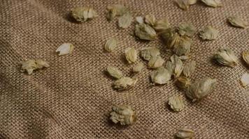 colpo rotante di orzo e altri ingredienti per la produzione di birra - produzione di birra 261