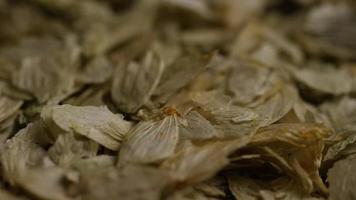 Tiro giratorio de cebada y otros ingredientes para la elaboración de cerveza - Beer Brewing 300 video