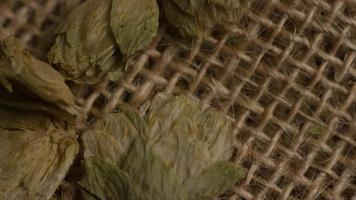 dose rotativa de cevada e outros ingredientes de fabricação de cerveja - fabricação de cerveja 259
