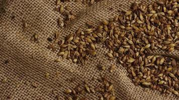colpo rotante di orzo e altri ingredienti per la produzione di birra - produzione di birra 221